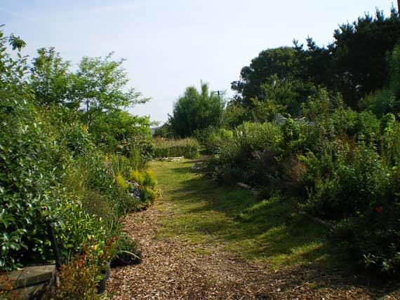 Education garden walkway