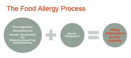 Alelrgy process diagram