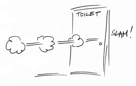 Toilet door slamming
