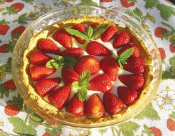 freefrom strawberry and coconut tart